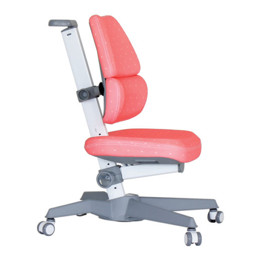 EGO C Kid2Youth Child Study Chair Malaysia