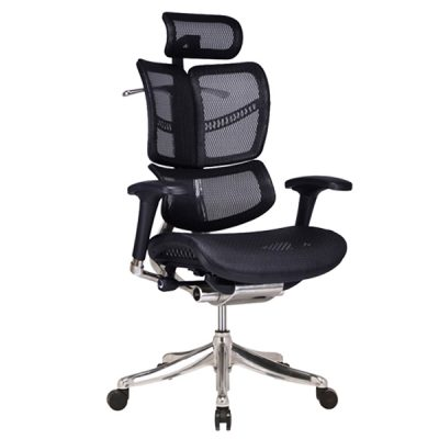 Fly Ergonomic Chair